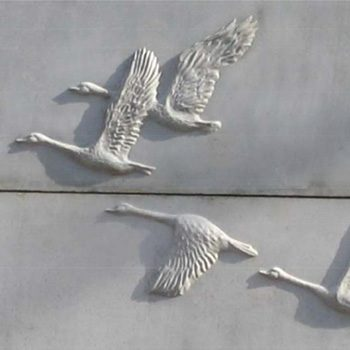 Geese Series